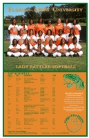 Pack of 100 Team Schedule Posters